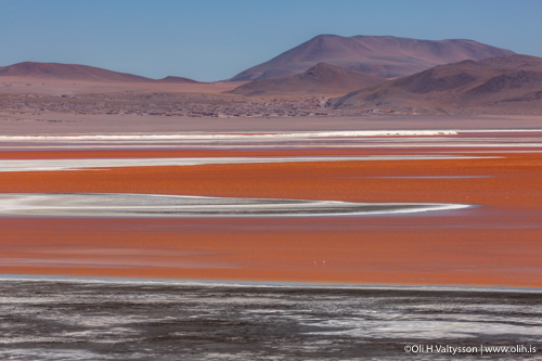 Laguna Colorada. Cerro Pabellon volcano in background , Bolivia